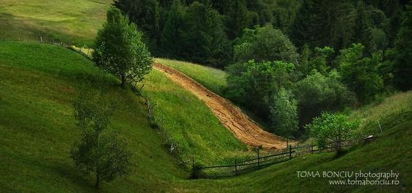 Un drum se unduia in vale