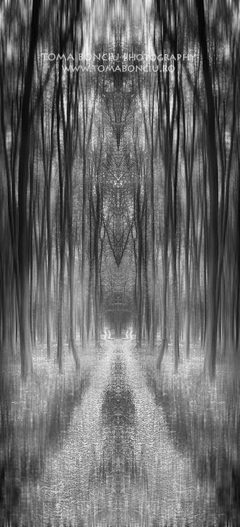 Porţi ascunse (Hidden gateways)