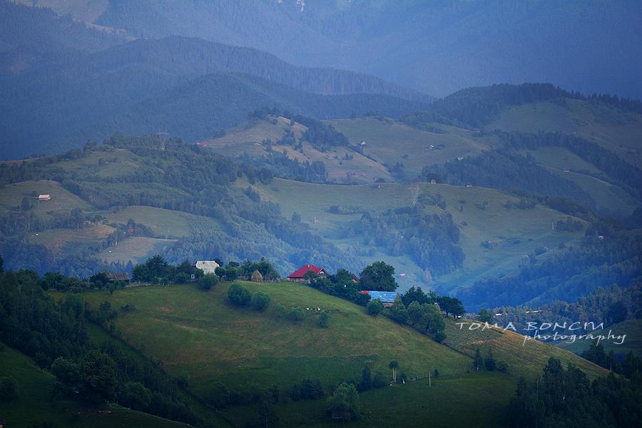 Dealurile Măgurii I