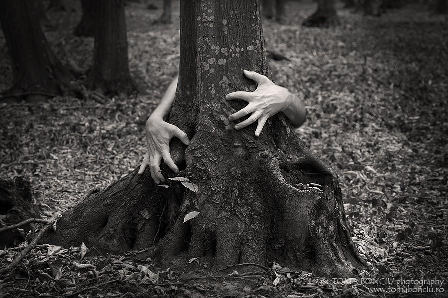Îmbrăţişarea naturii (Timpul ucide totul II)
