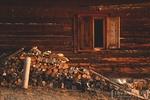 Fotografii Workshop Cheile Bicazului 16-18 Nov 2012
