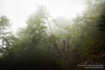 Fotografii Workshop Magura Oct 2012