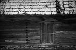 Fotografii Workshop Moeciu de Jos - Pestera 22-24 Mart 2013